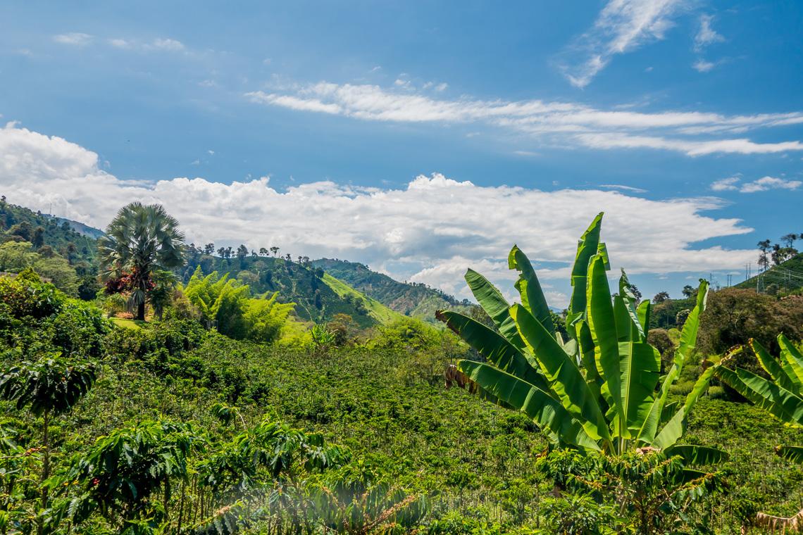 Klimaat noorden Colombia