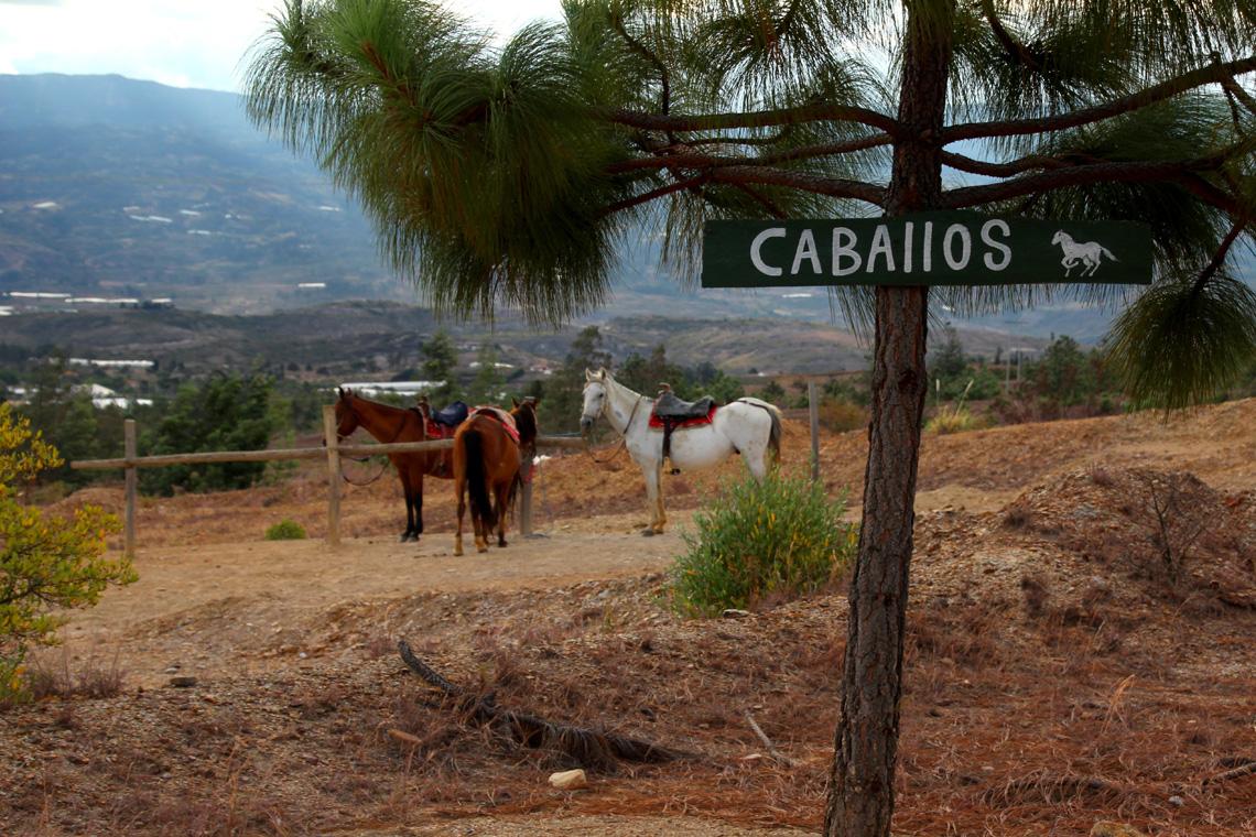 Paardrijden in Villa de Leyva