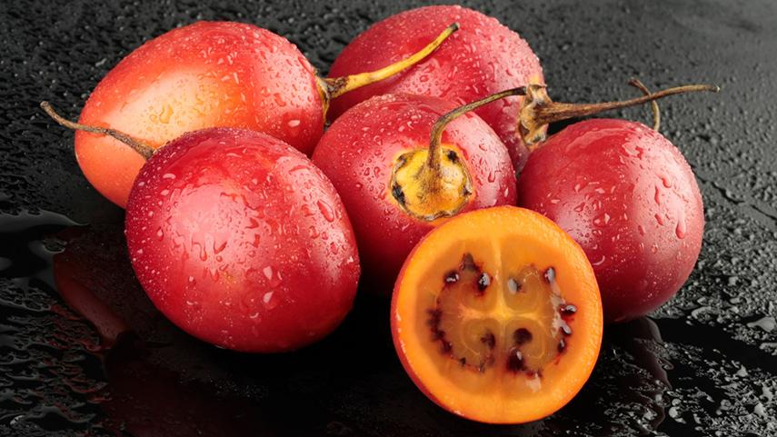 Tomate de Arbol (Tamarillo)
